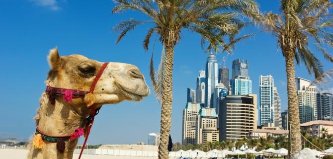 Kelionės į Dubajus